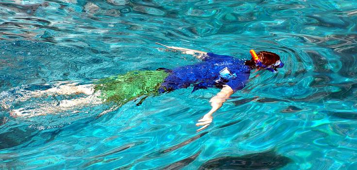 Bahamas Paradise Ocean Snorkel