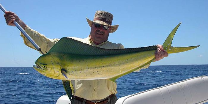 Bahamas fishing charters for Deep sea fishing bahamas