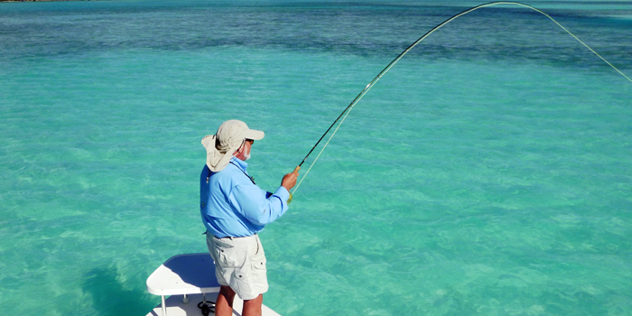Bahama Reef Fishing Trip