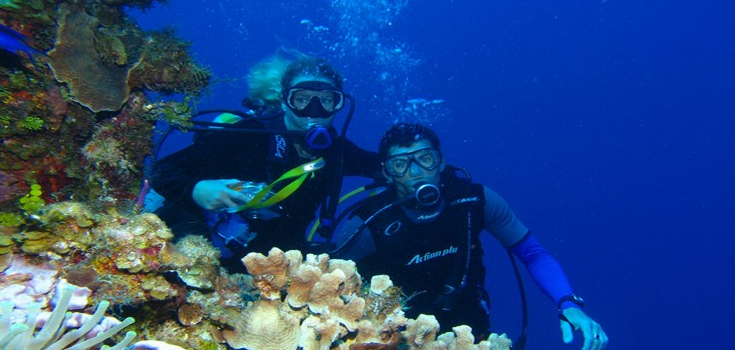 Stuart Cove Learn to Dive Resort Course