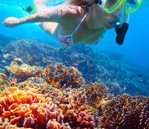 Nassau Bahamas Snorkel Adventure