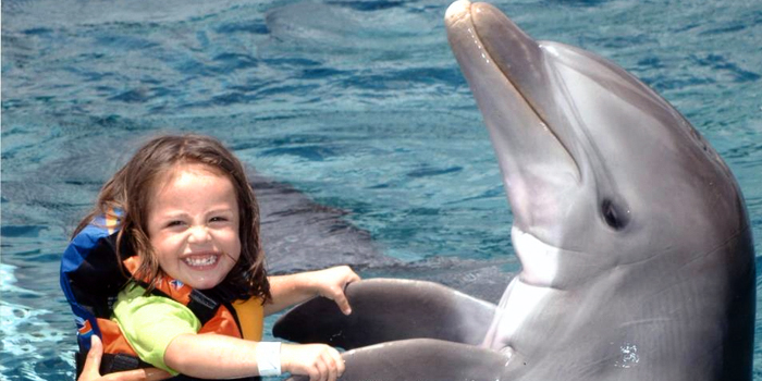 Royal Garrafon & Royal Dolphin Swim image 1