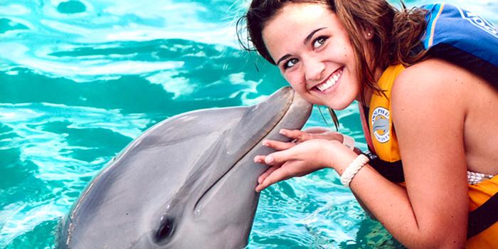 Royal Garrafon & Royal Dolphin Swim image 4
