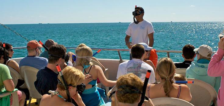 Sensational Snorkeling Sea Safari