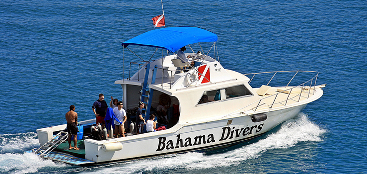 Bahama Divers One Tank Afternoon Dive