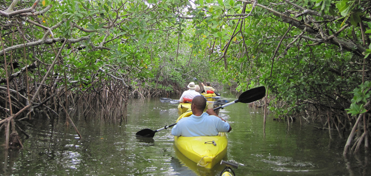 Lucayan National Park Kayak Tour