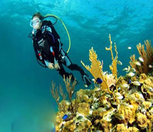 Freeport Learn to Dive Resort Course Dive