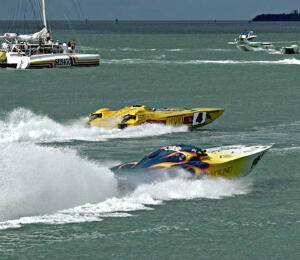 Powerboat Races Catamaran Day Trip
