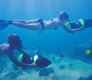 Cabo Snorkel & Sea Adventure