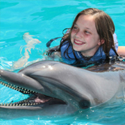 Dolphin Encounter and Las Caletas Beach Combo