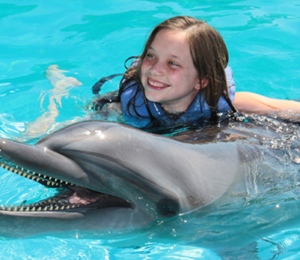Dolphin Encounter & Las Caletas Beach Combo
