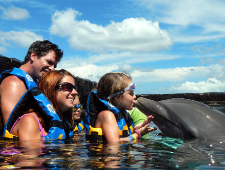 Nuevo Vallarta - Private Dolphin Swim for Groups